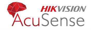 Monitoring inteligentny AcuSense Logo HikVision